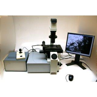 Innovatis Cellscreen Olympus IX50 Inverses Mikroskop  #4117
